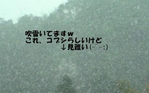 3月26日.JPG
